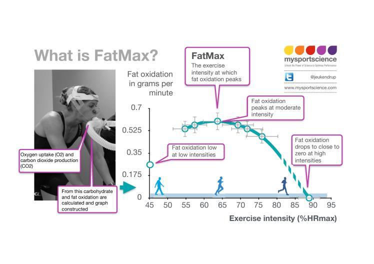 07 Fatmax 300dpi