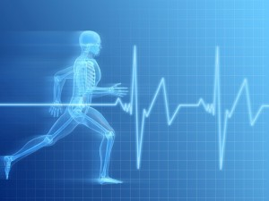 functional athlete (1)