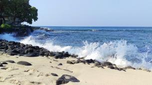 Honl's beach