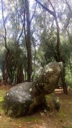 Phallic Rock (Kaule o Nanahoa)